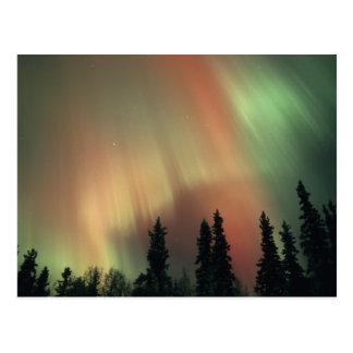 Área de los E.E.U.U., Fairbanks, Alaska central, Tarjeta Postal