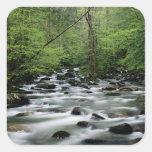 Área del área de Greenbrier, Great Smoky Mountains Pegatina Cuadrada