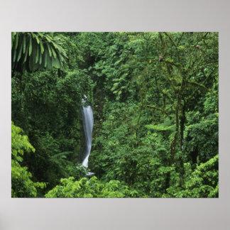 Área del volcán de Costa Rica, Arenal, puentes de  Posters