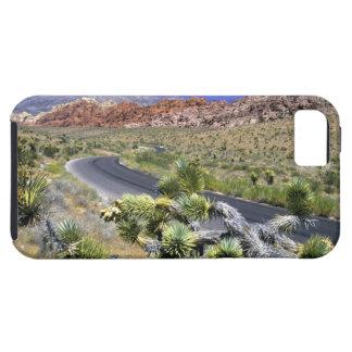 Área nacional de la protección del barranco rojo iPhone 5 carcasa