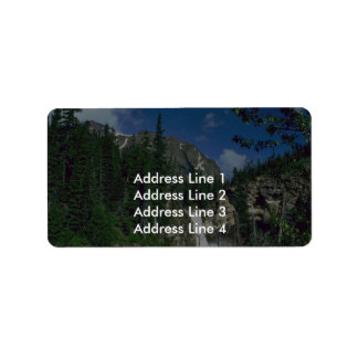 Area Of Mountain Trees Label