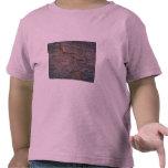 arena 3D Camiseta