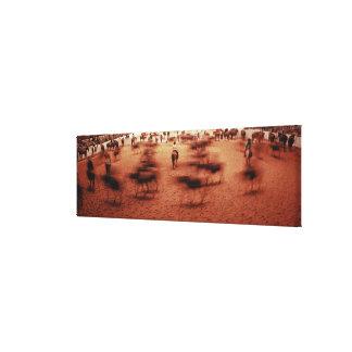 Arena del rodeo, movimiento borroso, Tejas, los E. Impresiones De Lienzo