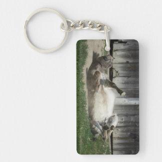 Arena que baña el burro llavero rectangular acrílico a doble cara