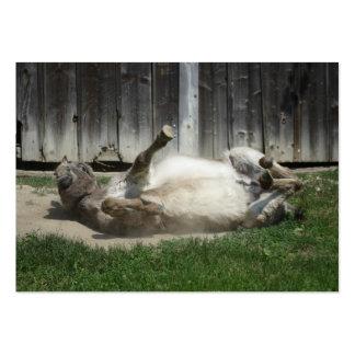 Arena que baña el burro tarjetas de visita grandes