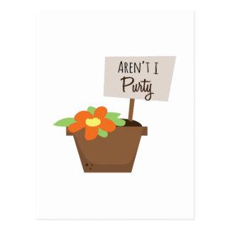 Arent I Purty Postcard