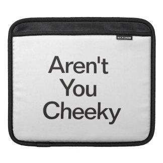 Aren't You Cheeky iPad Sleeves