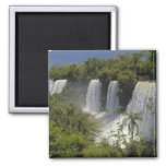 Argentina, Iguacu Falls in sun. 2 Inch Square Magnet