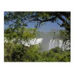 Argentina, Iguacu Falls in sun. 2 Postcard