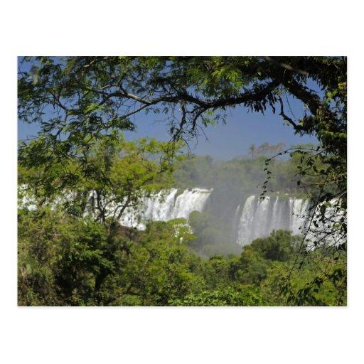 Argentina, Iguacu Falls in sun. 2 Postcards