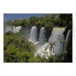 Argentina, Iguacu Falls in sun. Card