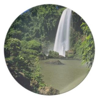 Argentina; Igwazu; Igwazu Falls. Salto Dos Melamine Plate