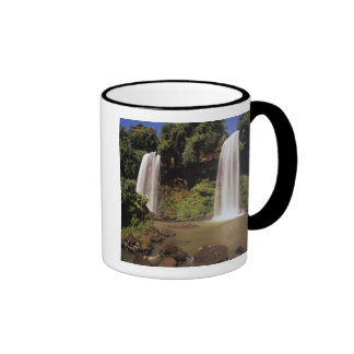 Argentina, Igwazu, Igwazu falls. Salto Dos Ringer Mug