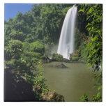 Argentina; Igwazu; Igwazu Falls. Salto Dos Tile