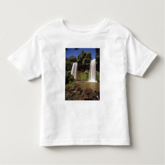Argentina, Igwazu, Igwazu falls. Salto Dos Toddler T-shirt