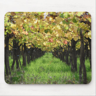 Argentina, Mendoza, Row Of Grape In Vineyard Mouse Pad