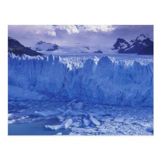 Argentina, Patagonia, Parque Nacional los Post Card