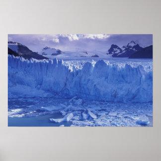Argentina, Patagonia, Parque Nacional los Poster