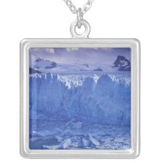 Argentina, Patagonia, Parque Nacional los Silver Plated Necklace