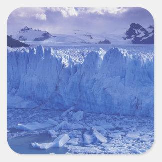 Argentina, Patagonia, Parque Nacional los Square Stickers