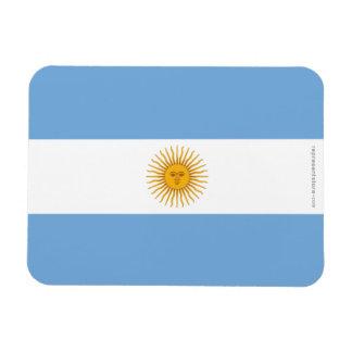 Argentina Plain Flag Rectangular Magnets