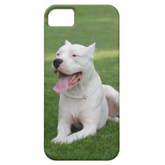 Argentinian Dog iPhone SE/5/5s Case