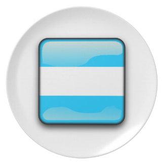 Argentinian polished flag plate