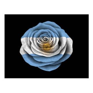 Argentinian Rose Flag on Black Postcard