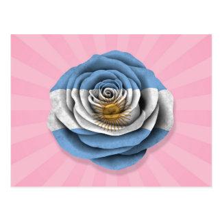 Argentinian Rose Flag on Pink Postcard
