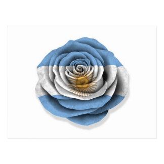 Argentinian Rose Flag on White Postcard