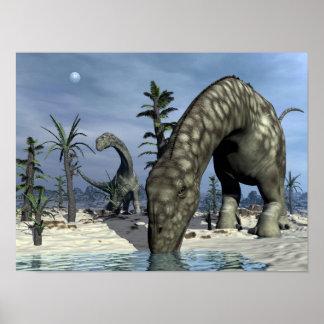Argentinosaurus dinosaur drinking poster