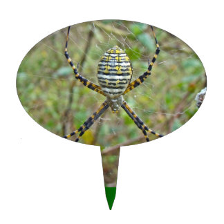 Argiope trifasciata Orb Weaver Spider Cake Topper
