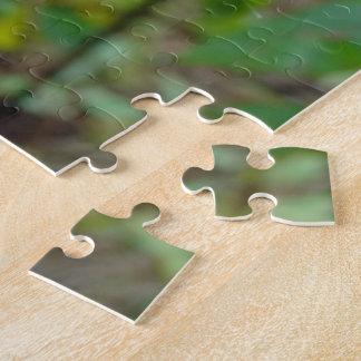 Argiope trifasciata Orb Weaver Spider Jigsaw Puzzle