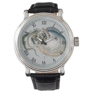 Argonauta del pulpo del vintage, animales de la relojes de pulsera