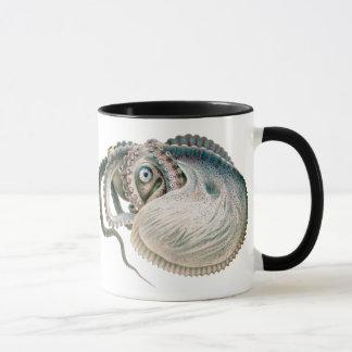 Argonauta del pulpo del vintage, animales de la taza