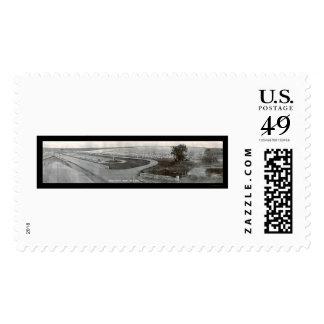 Argonne Cemetary WWI Photo 1919 Stamp