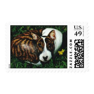 """Argos"" dog rock stamp"