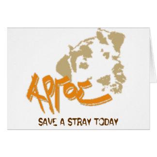 Argos, SAVE A STRAY TODAY Card
