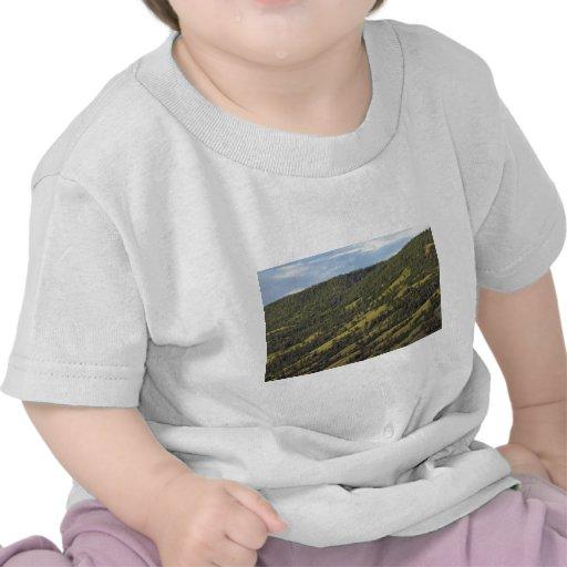 Argumentos del esquí en verano camisetas