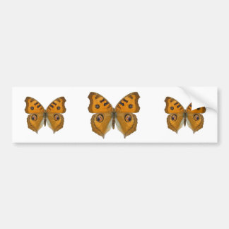 Argus Butterfly Bumper Stickers