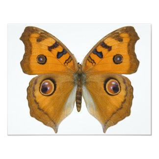 Argus Butterfly Custom Invites