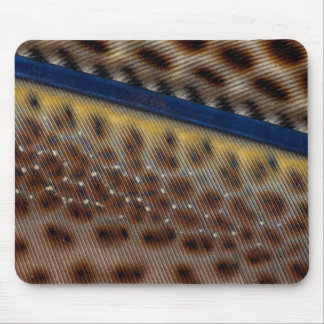 Argus Pheasant Feather Close Up Mouse Pad