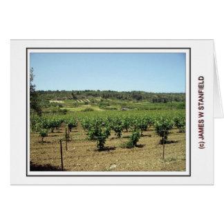 Arhanes vineyard greeting card
