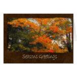 Ariana Autumn Leaves 2 Seasons Greetings Greeting Cards