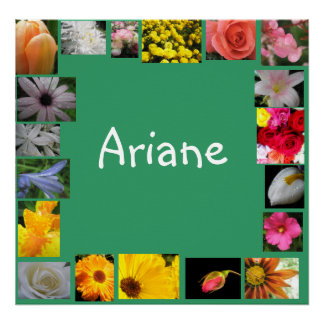 Ariane Posters