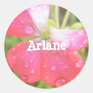 Ariane Pegatina Redonda