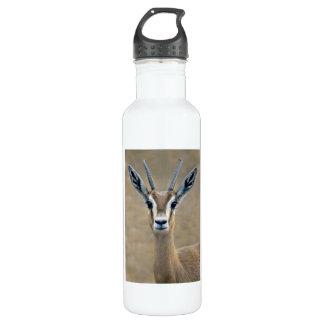 Ariel 24oz Water Bottle
