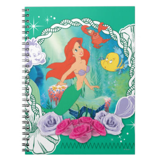 Ariel - 2 curiosos spiral notebooks