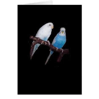 Ariel and Oscar budgie card
