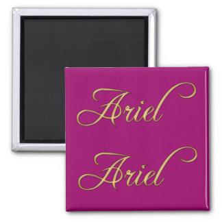 ARIEL Name-Branded Gift Magnet